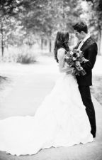 Luis Coronel Wedding Series by FanGirlLife__