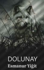 DOLUNAY-Tamamlandı by Yigitesmanur