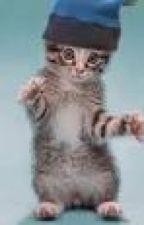Warrior Cat Randomness by Swiftdapple