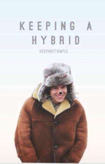 Keeping A Hybrid (One Direction AU )