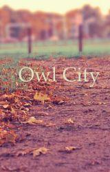 Owl City by JMR1998