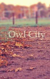 Owl City by JMR1998