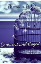 Captured and Caged by Breanna102198
