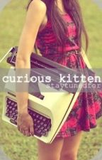 Curious Kitten by staytunedfor