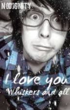 I love you, whiskers and all. (AmazingPhil love story) by NoDignity