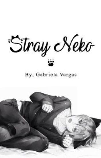 Stray Neko [BoyxBoy]