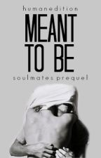 Meant to be | Actualizaciones lentas by HumanEdition
