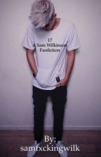 17 {Sam Wilk Fan Fiction} by samfxckingwilk