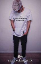 17 {Sam Wilk Fan Fiction} by samfxckingwilk