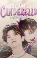 The Last Cinderella by GeyikVePanda