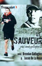 Le Sauveur || v.f  [EN RÉÉCRITURE] by galladdicted