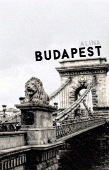 Budapest || Alderweireld by durmsteiger