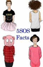 5SOS Facts [Livre] by Michael_heart