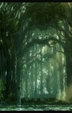 Despues del bosque by iarabs