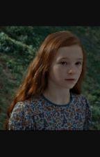 Lily Potter 1- il libro segreto by fatto_il_misfatto