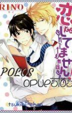 Polos Opuestos ( yaoi) by tsukihi-chan
