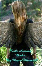 Castle Academy Book 1 by MegEllison247