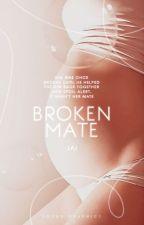 Broken mate REWRITTEN by JJohnson75