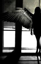 A Maximum Ride Story by FantasticDreamer