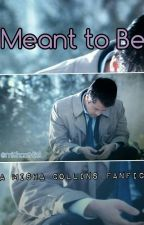 Meant To Be (a Misha Collins fanfic) by supunatural