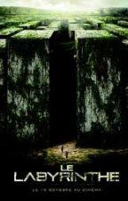 Le Labyrinthe [Newt] by MlleLuluu
