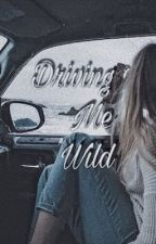 Driving me wild by quartermilebabyy