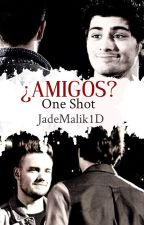 ¿Amigos? (Ziam) {One Shot} by JadeMalik1D