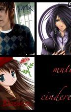 mute Cinderella by hinatahug