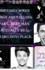 Falling into Place-2d book of A Directioners Dream by horsesandhockey