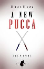 A new Pucca || Pucca by HarleyHearts