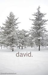 david. by OmniaPossibiliaSunt