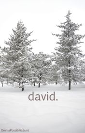 david. by OmniaPossibiliaSunt