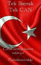 Tek Bayrak Tek Can by Ceza61Ceza