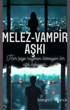 Melezin Vampire Aşkı! by snglmykeerr