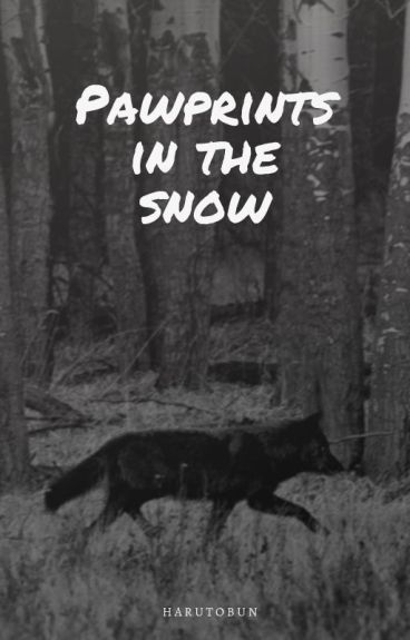 Pawprints in the snow [Boy x Boy]