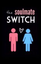 The Soulmate Switch by notjustanovel