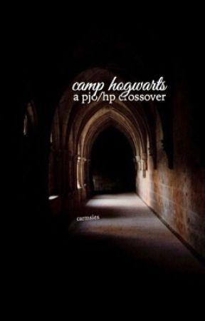 Camp Hogwarts (PJO/HP) by carmsies