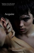 Acquire (BoyxBoy) by xoaygirl