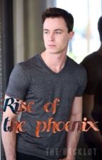 |rise of the phoenix| jordan parrish ff by PrincessToniii