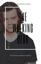 The Walking Dead || h.s by xworldstylesx
