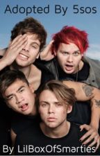 Adopted by 5sos by LilBoxOfSmarties