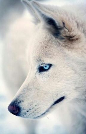 Mine (boyxboy werewolf) by Stephie446