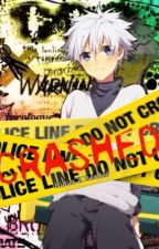 Crashed (Killua X Reader) (Completed) by stellaaw