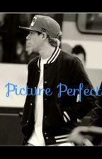 Picture Perfect (Niall Horan Fan Fiction) by ginny776