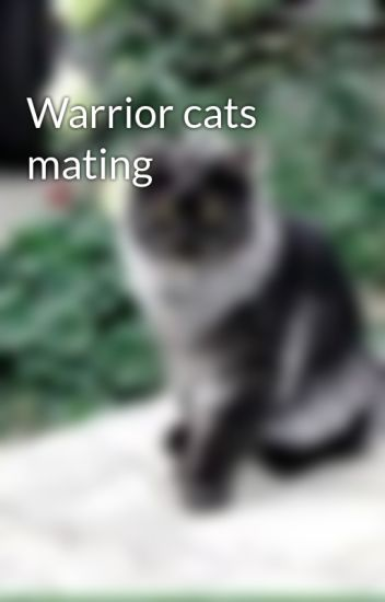 Warrior cats mating