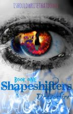Shapeshifters: Dragonfire by ishouldwritethatdown