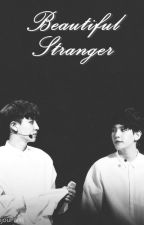 Beautiful Stranger |BAEKYEOL| by KamijouPark