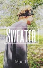 Sweater || a.i by acidmar
