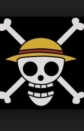 One Piece x Reader - Jealous Zoro X Reader - Wattpad