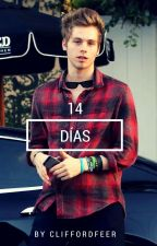 14 días  »Luke Hemmings. by cliffxrdfeer